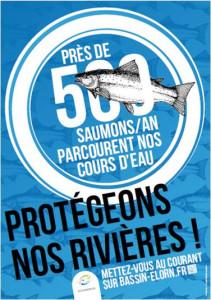 campagne image elorn saumon.emf